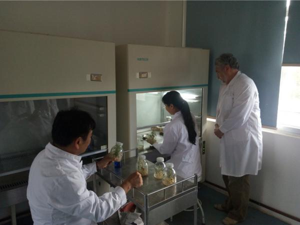 外国专家指导科技人员实验操作