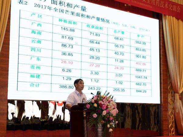 """学会理事黄国弟研究员作""""芒果产业现状及发展方向""""专题报告"""
