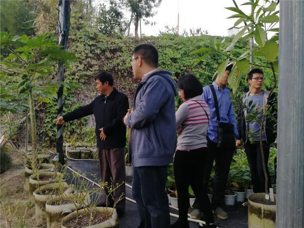 参观厦门植物园引种驯化棚