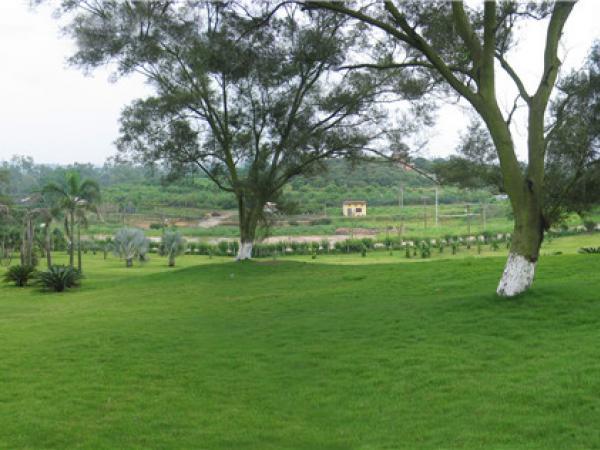 植物园区风景