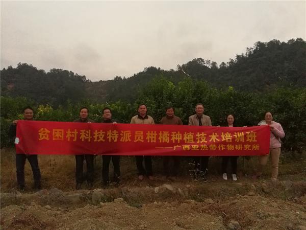 图2 广西热作所贫困村科技特派员组织到藤县大黎镇贫困村沙糖桔果园举办柑橘种植技术培训班(牛英摄影)